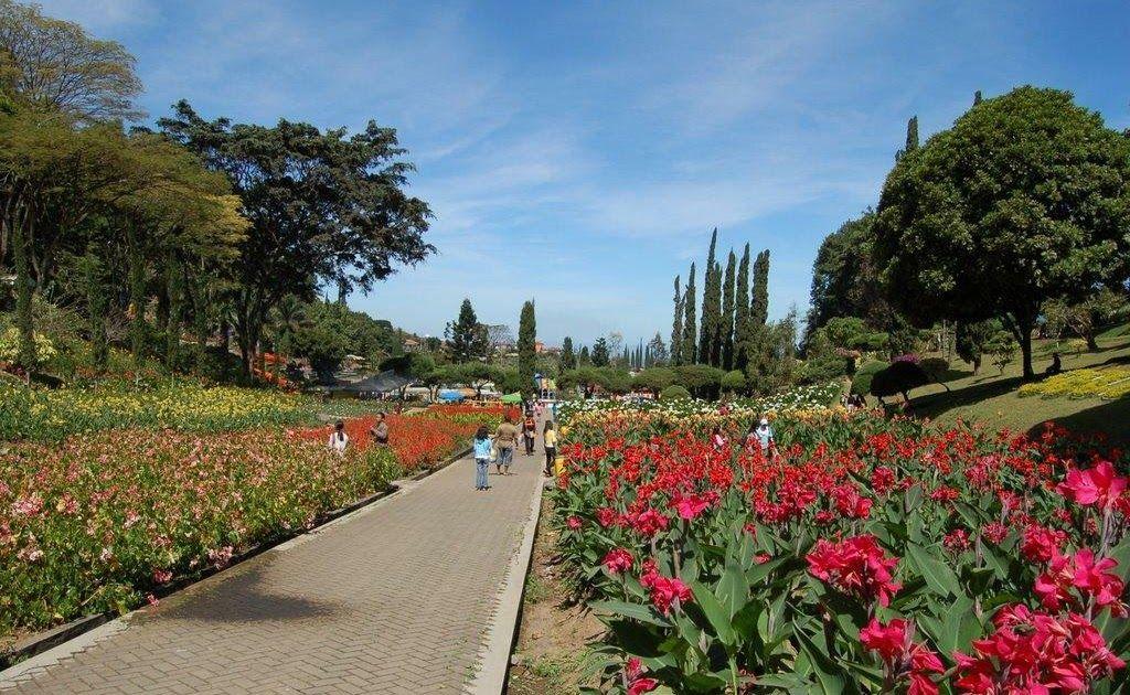 Foto Bunga Yang Ada Di Indonesia Taman Bunga Tercantik Yang Ada Di Indonesia Page 16 Kaskus Toko Bunga Bekasi Toko Bunga Terbaik D Bunga Pemandangan Gambar
