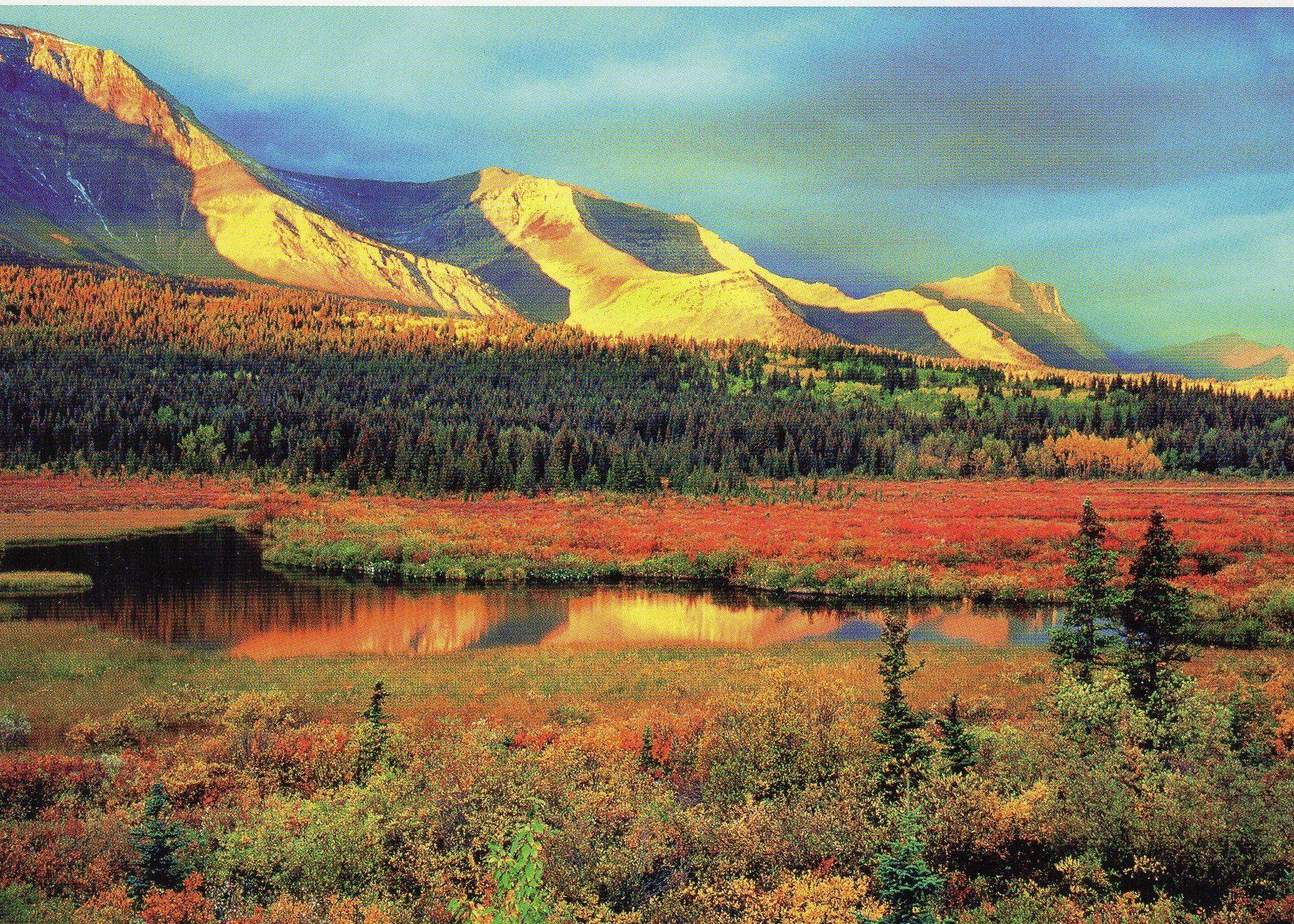 Crooked River, Waterton Lakes National Park, Alberta.  Photo credit: Tim Fitzharris