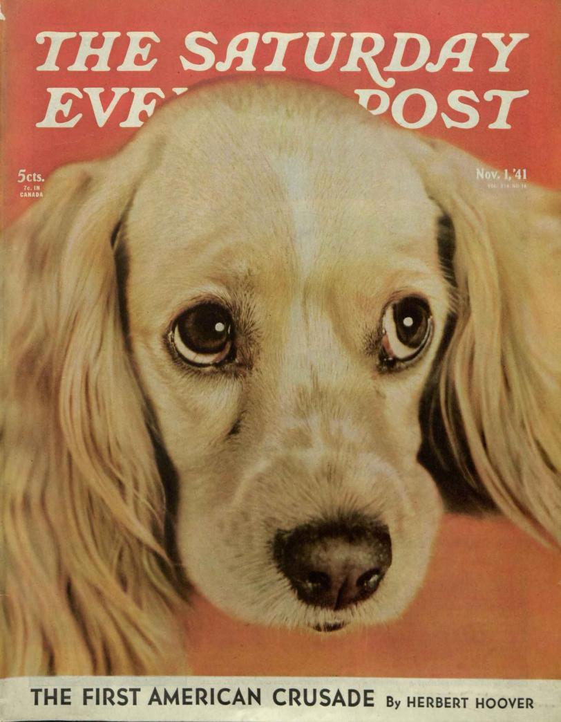 Pin On Saturday Evening Post