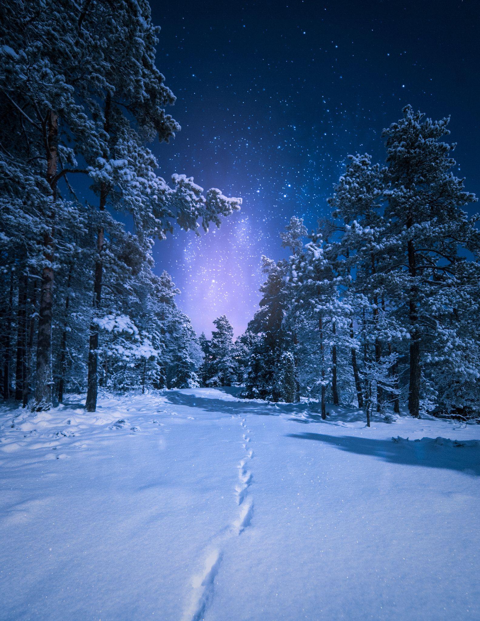 Trail In The Snow Beautiful Nature Scenes Snow Scenes Photography Winter Scenes