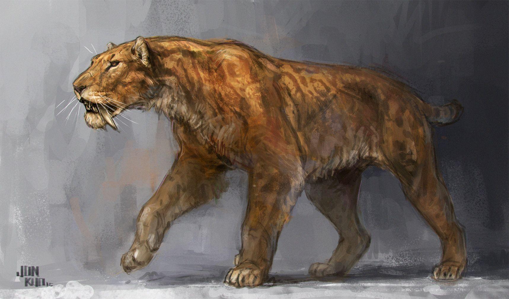 Smilodon Face By Pyroraptor42 On Deviantart: Dinosaurs & Pre Historic Animals !