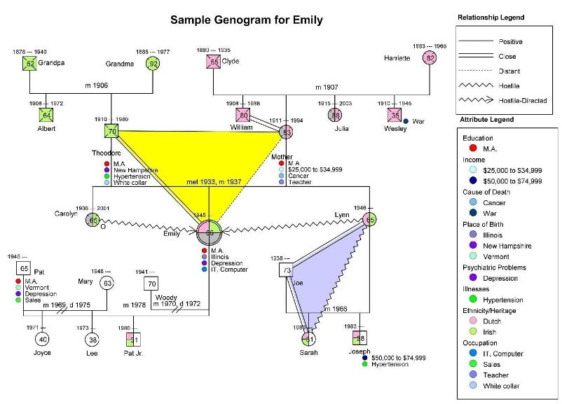 Genogram Example: Triangles | Social Visualizations: Genograms And