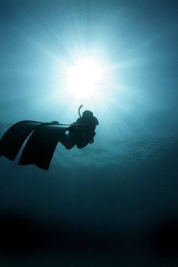 Free Diving Explained