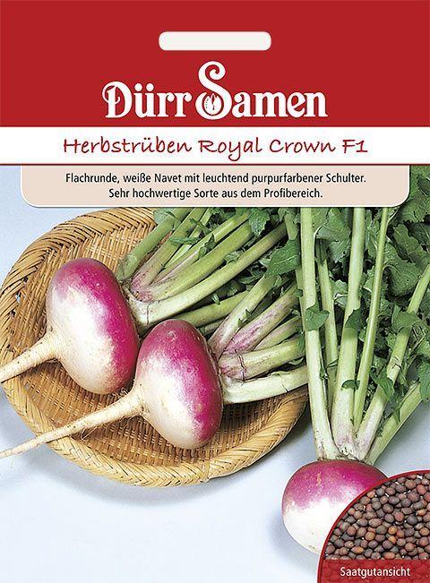 rotes Fleisch Rettich 150 Samen Gemüse