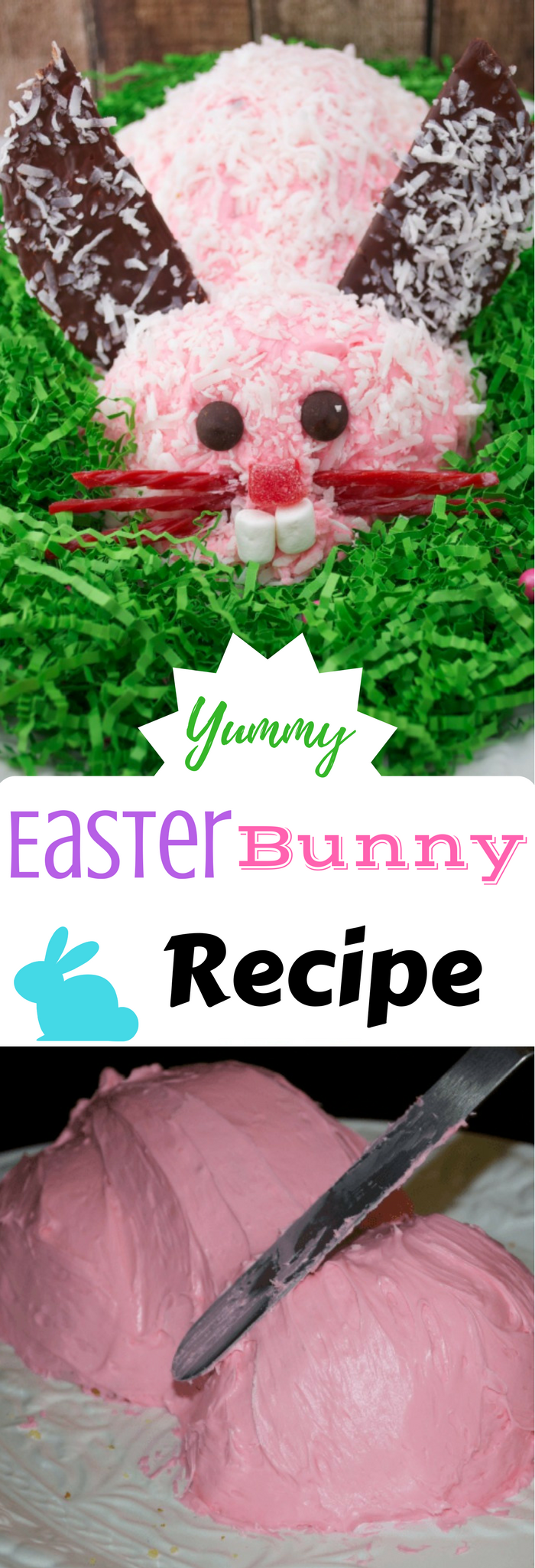 Easy Easter Bunny Cake  This is a great tutorial instructions including photos for making an Easter Bunny Cake Recipe. You don't need anything special & u can use just about any cake batter. Super Easy!
