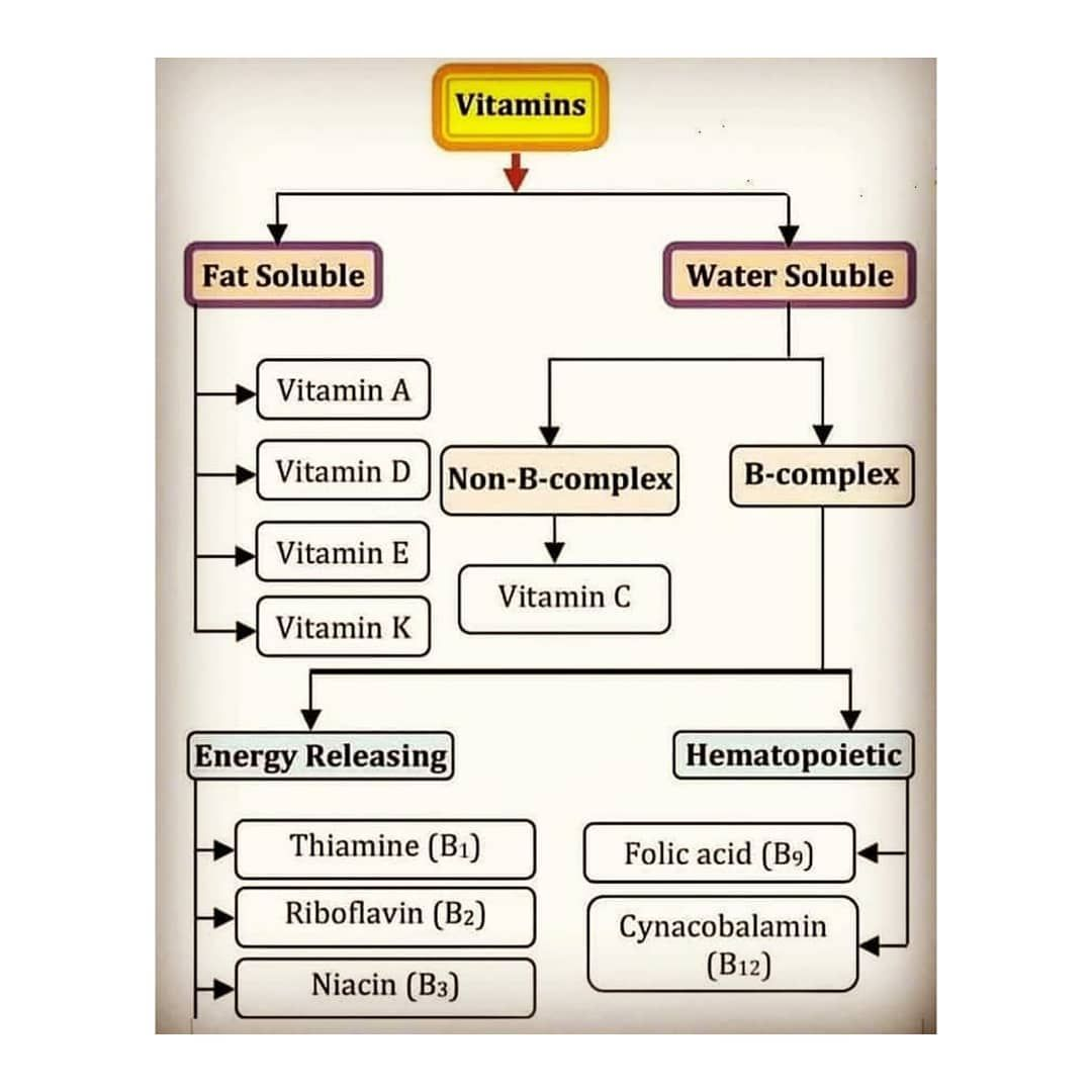 The Biomics On Instagram Vitamins Classification Abundance Disease A Vitamin Is An Organic Molecule That Is An Essenti Organic Molecules Molecules Vitamins