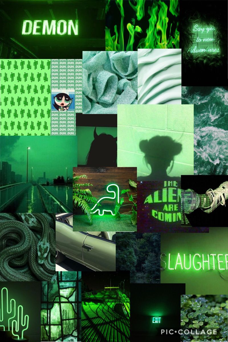 Green Aesthetic Green Aesthetic Dark Green Aesthetic Mood Wallpaper