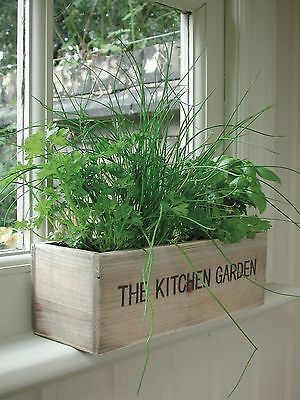 Herb Kitchen Indoor Garden Kit Wooden Windowsill Planter
