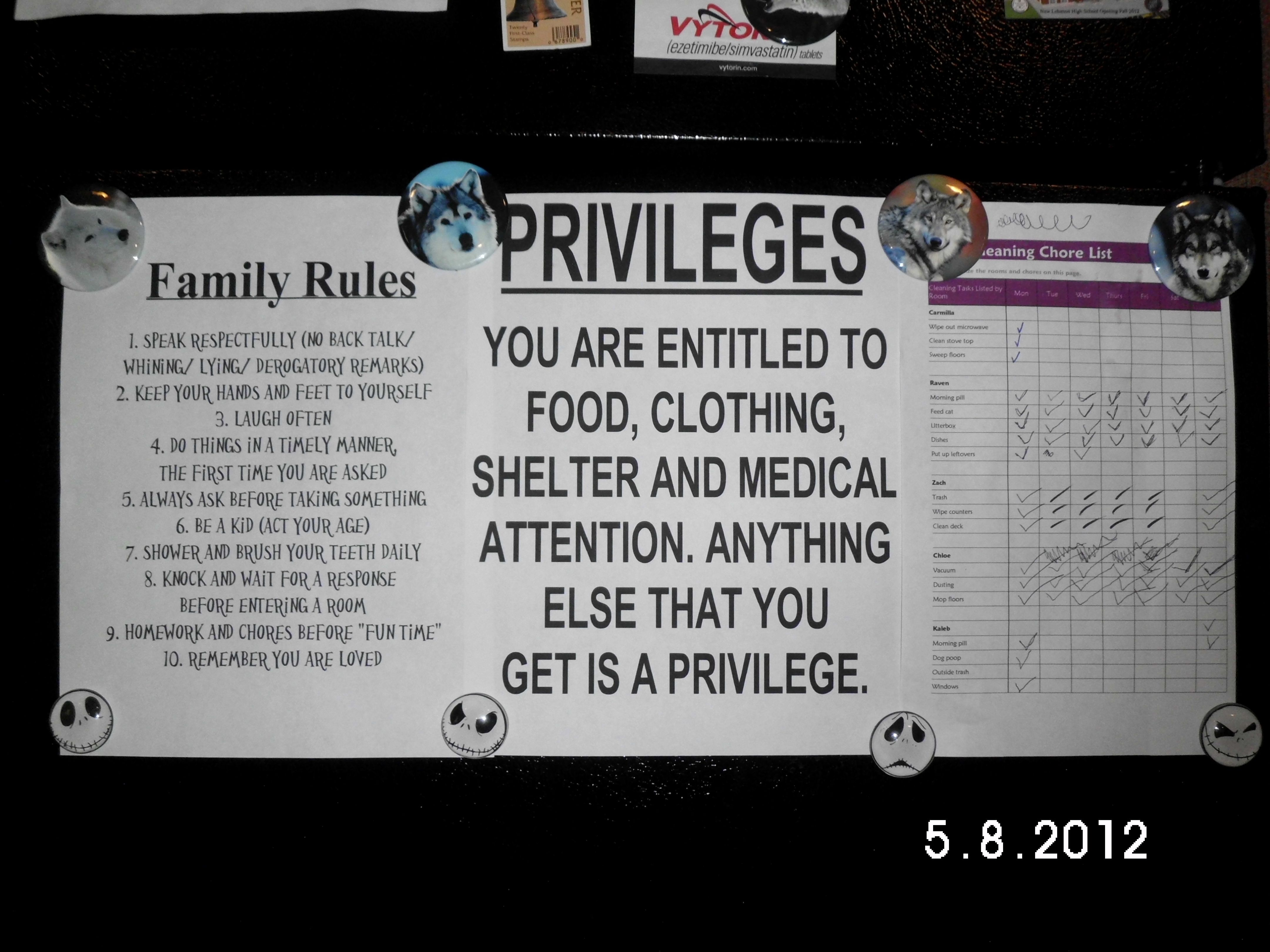 Rules and Privileges on our fridge