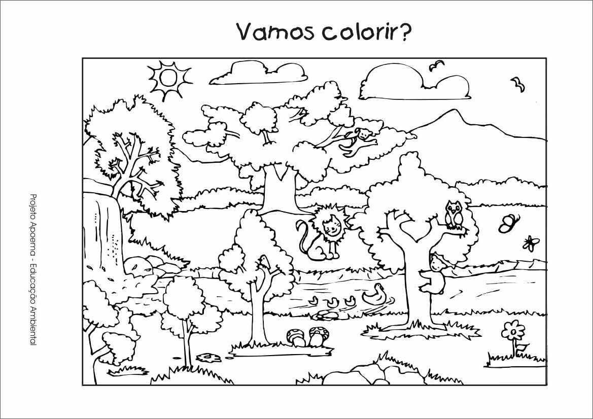 30 Desenhos Da Natureza Para Colorir E Imprimir Em 2020 Com