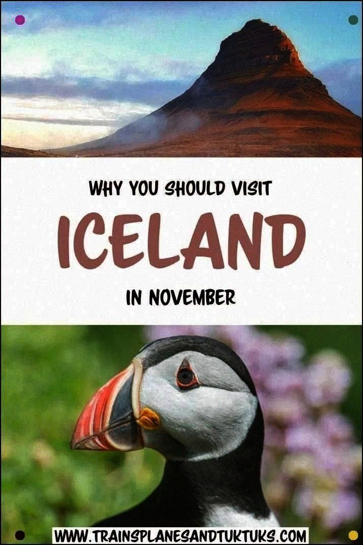 Visiting Iceland In Winter. Iceland In November Is Especially Beautiful, With The Northern Lights,