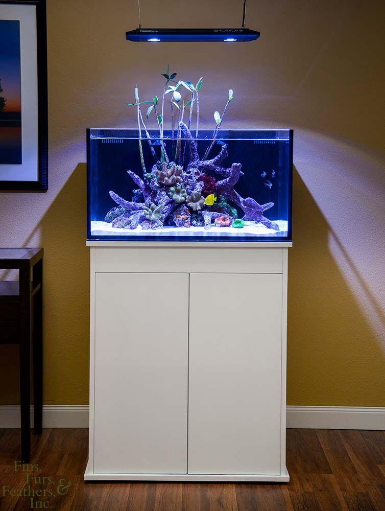 innovative marine 25 gallon fusion lagoon aquarium w high. Black Bedroom Furniture Sets. Home Design Ideas