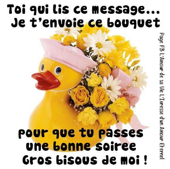 Toi qui lis ce message je t 39 envoie ce bouquet pour que for Bouquet de fleurs humour