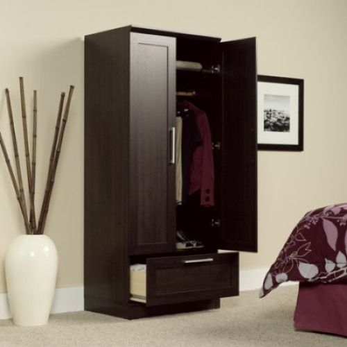 SAUDER HomePlus Collection 29 In. Freestanding Wood Laminate Wardrobe With  Storage Cabinet In Dakota Oak 411312 At The Home Depot   Mobile