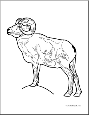 free big horn sheep Coloring Pages