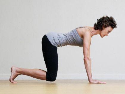 5 beginner planks  pilates for beginners yoga benefits