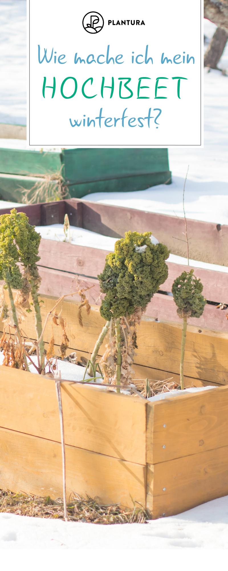 Hochbeet Im Winter Garten Ideen Tipps