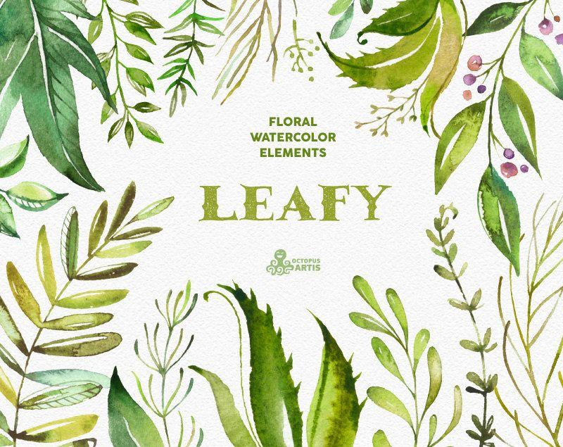 Grünen. Florale Elemente. Aquarell Zweige Blätter Vorlage