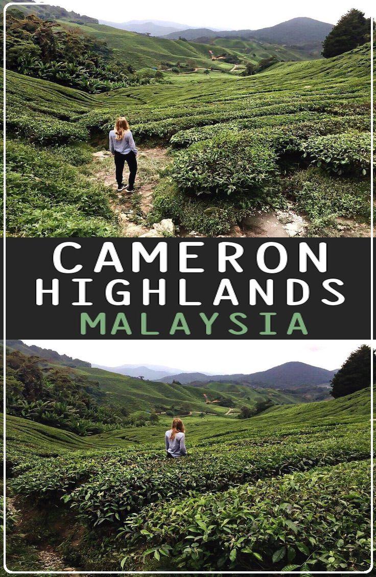 ボード「Cameron Highlands, Malaysia」のピン