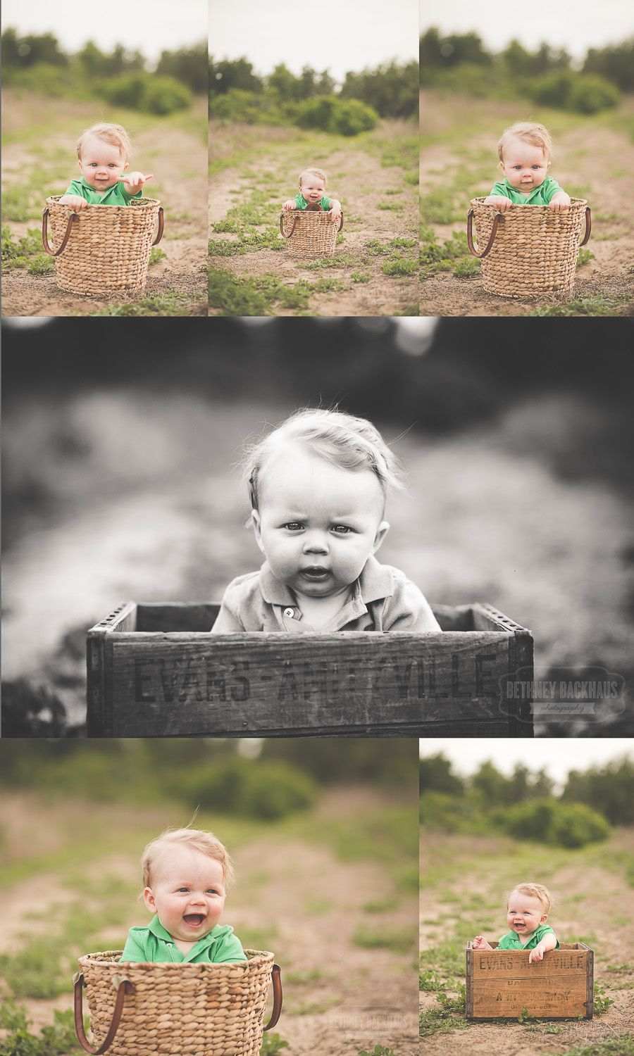 Bethney backhaus photography 6 month session mount dora photographer find this pin and more on safari themed baby