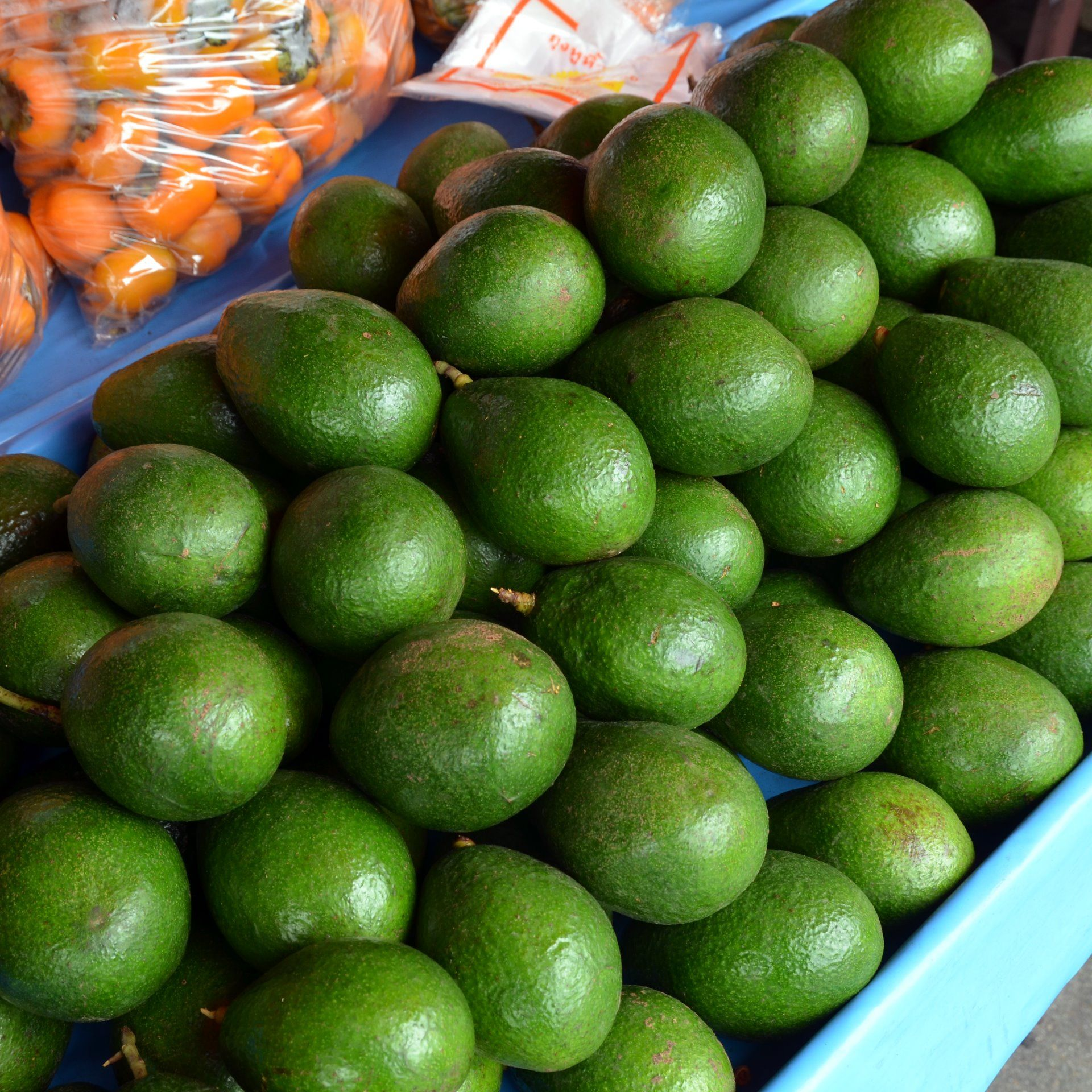 Avocado's are beautiful and creamy on Norfolk Island