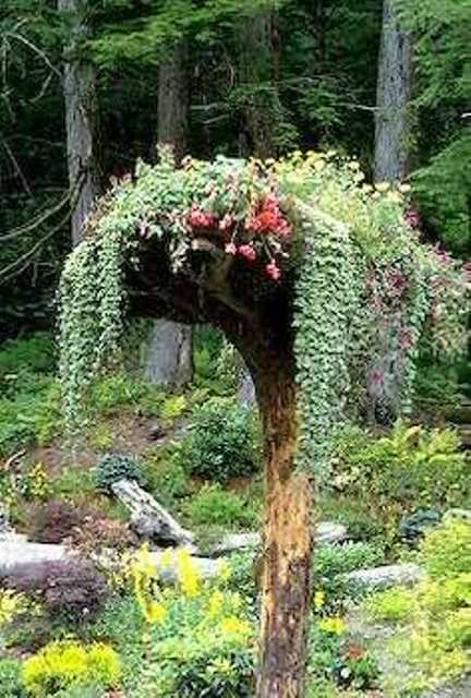 Old log turned into a vertical planter Recipientes para plantas - plantas para jardin