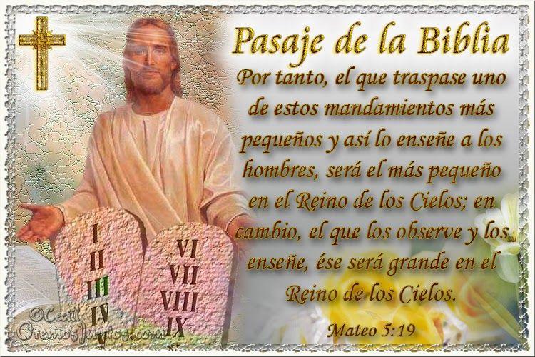 Vidas Santas: Santo Evangelio según san Mateo 5:19