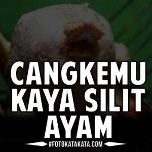Kata Lucu Bahasa Jawa Ngapak