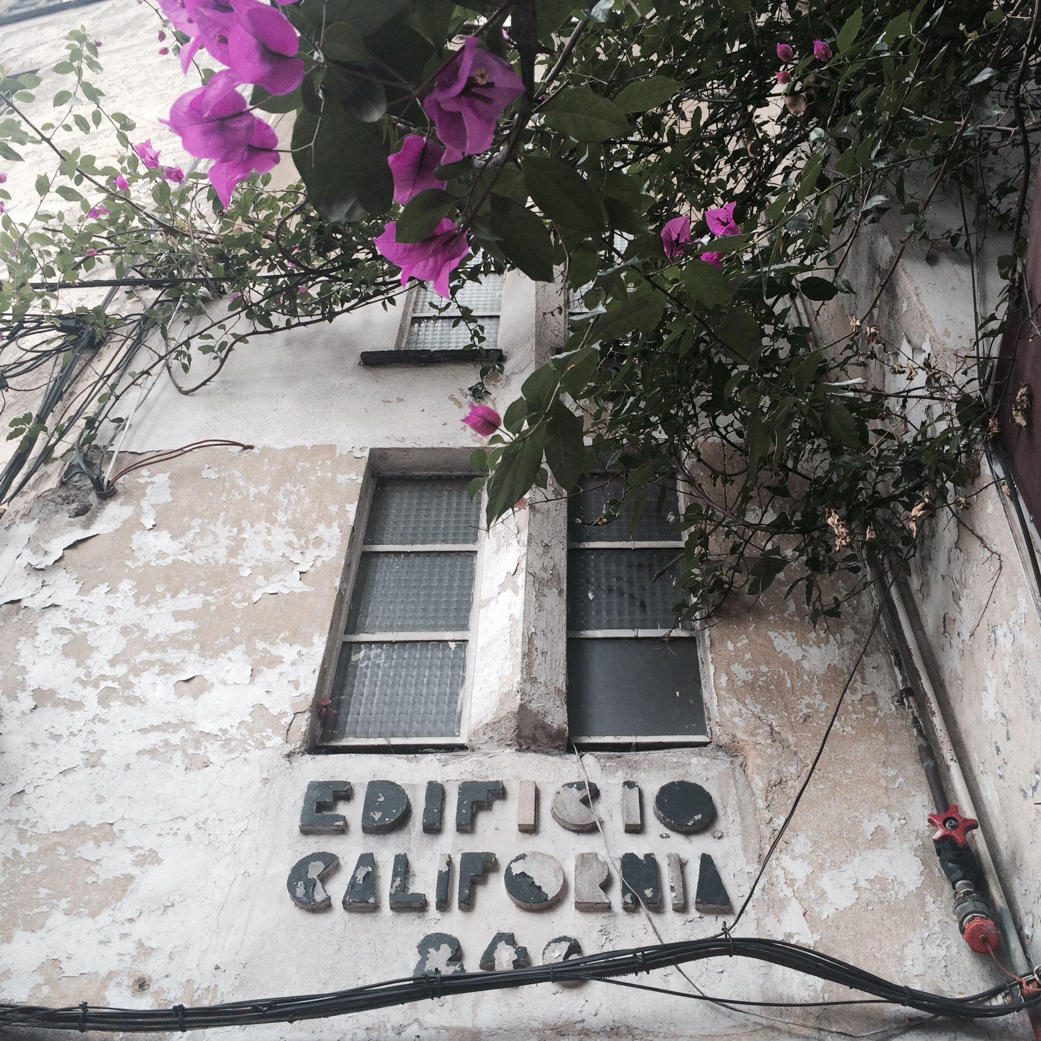 Deco en la Condesa. La avenida Baja California cruzaba la Roma y Condesa, era elegante y ostentaba un camellón con Palmeras y vías de tranvía. Hoy un impersonal Eje Vial.