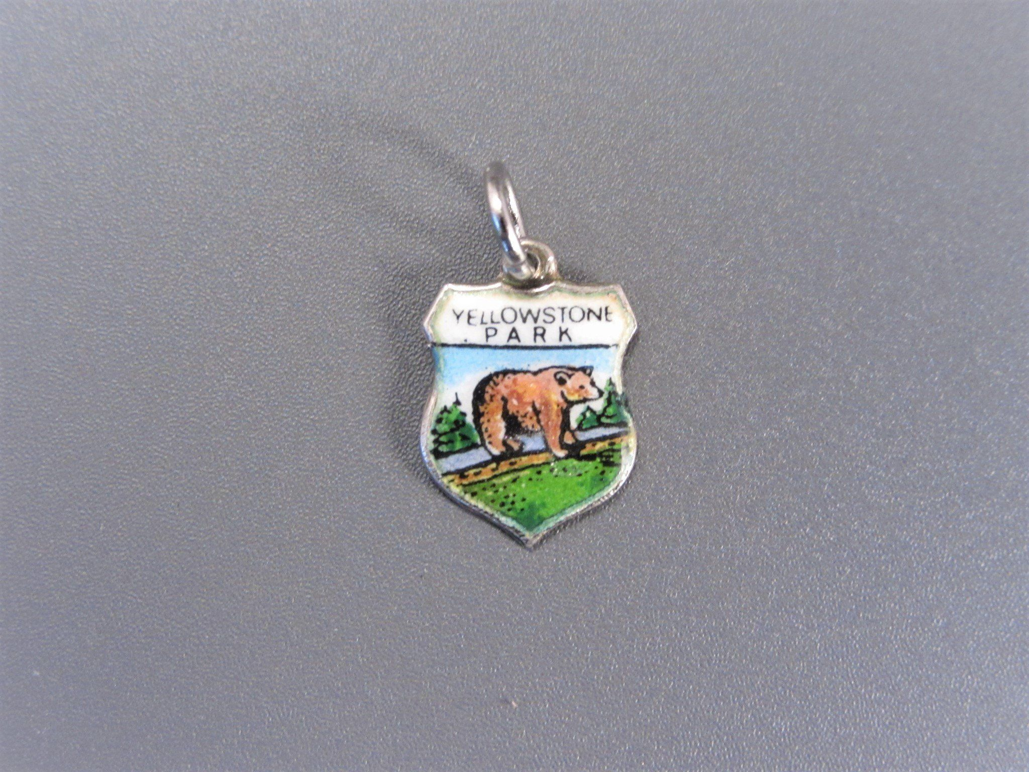 Sterling Silver Charm Bracelet With Attached Yellowstone National Park Map Charm