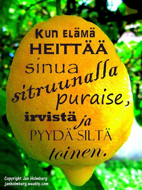 http://janholmberg.weebly.com/2/post/2014/02/kun-elm-heitt-sitruunalla.html