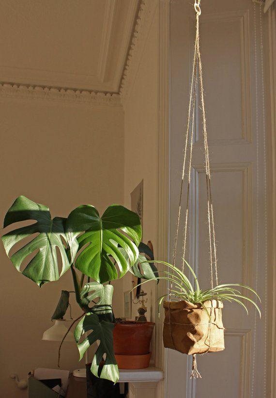 Planter, hanging paper planter, macramé planter, washable paper, wall planter, plant pot, interior decor, urban jungle, green living