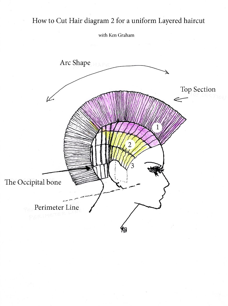 How To Cut Hair In Layers Diagram2