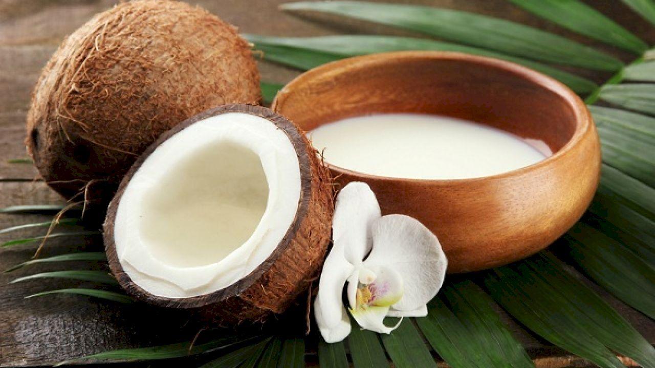 فوائد حليب جوز الهند للجسم Coconut Benefits Home Remedies For Hair Homemade Conditioner