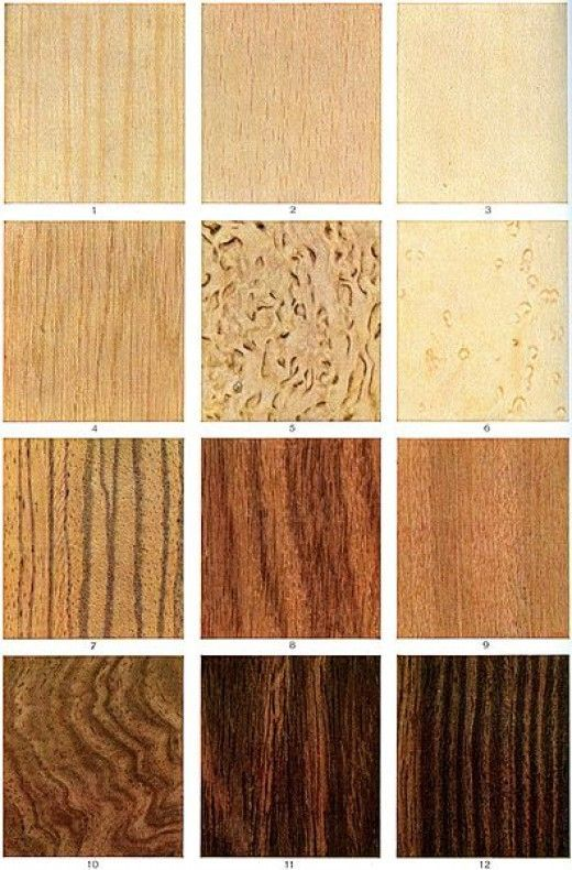 Guitar Tonewoods: A Guide for Electric, Acoustic and Bass Guitar