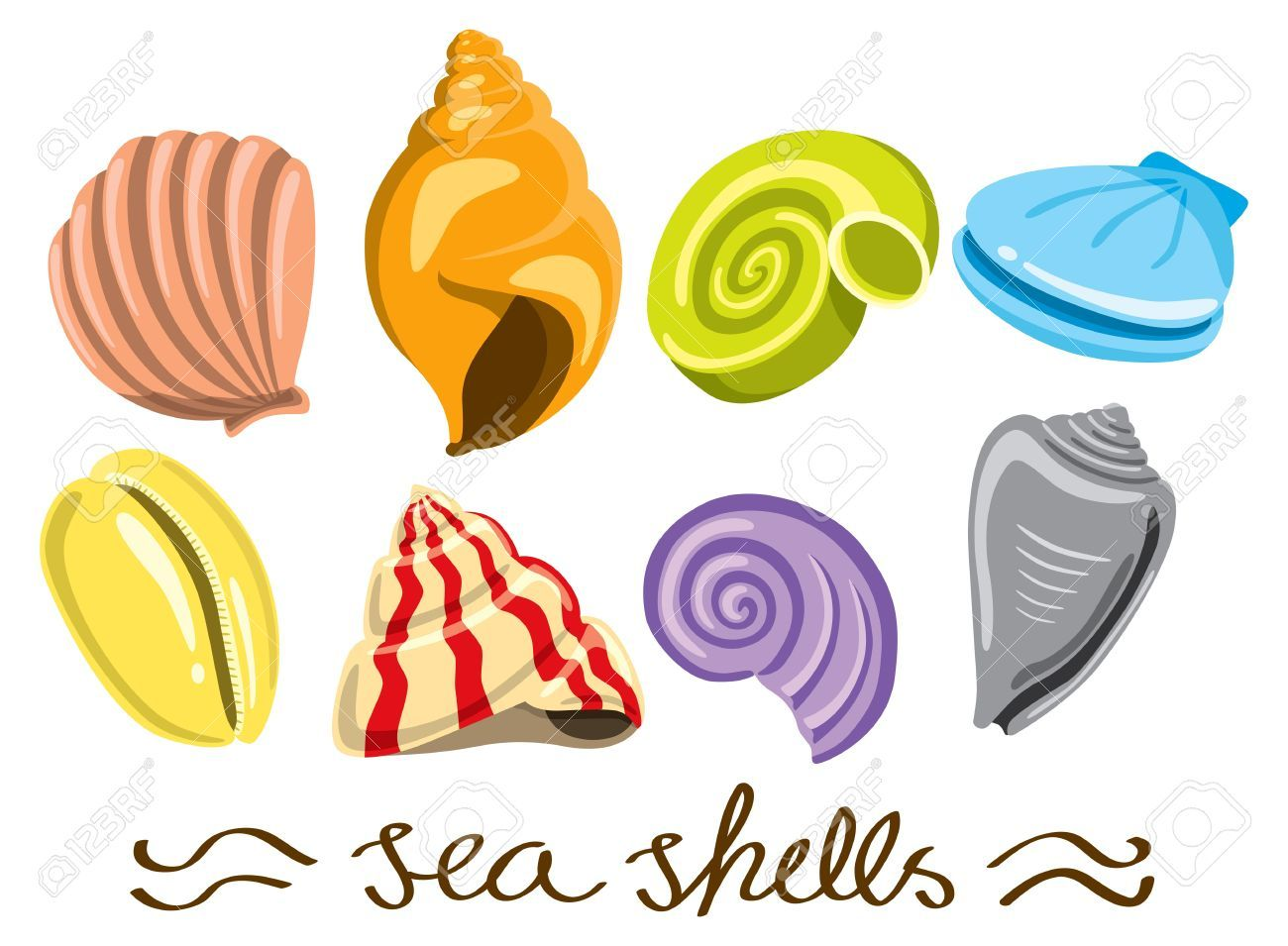 Animated Pictures Of Seashells scallop shell stock illustrations, cliparts and royalty free