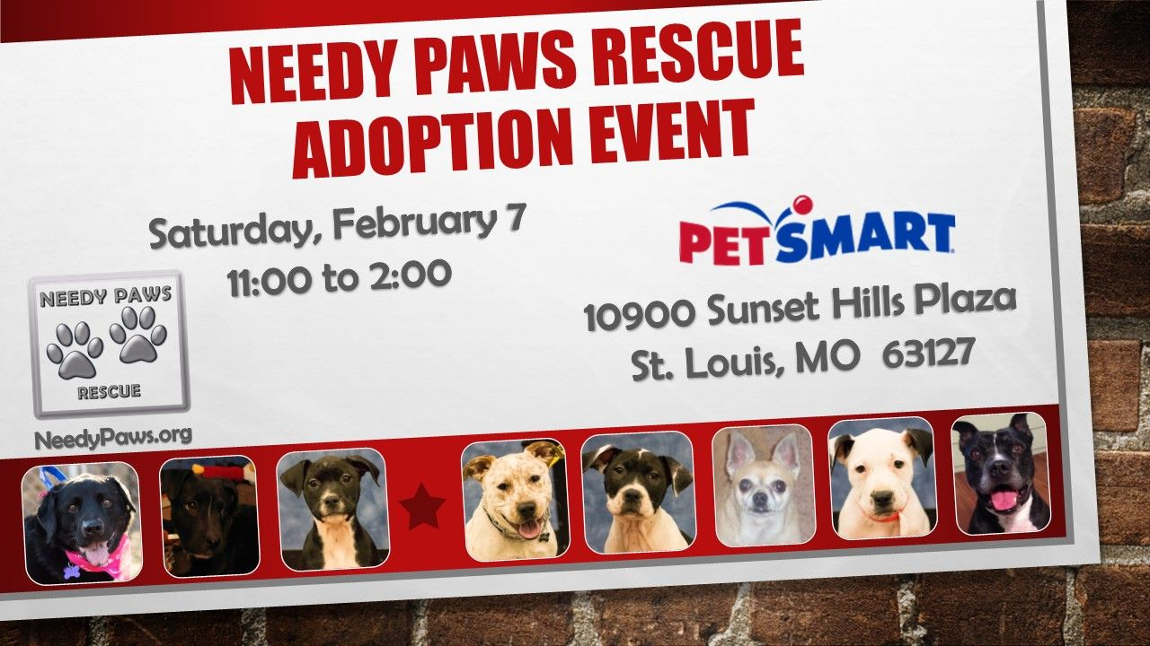 Needy Paws Rescue Will Be Holding An Adoption Event On Saturday February 7 From 11 2 At The Sunset Hills Petsmart Stop By Paws Rescue Adoption Sunset Hills