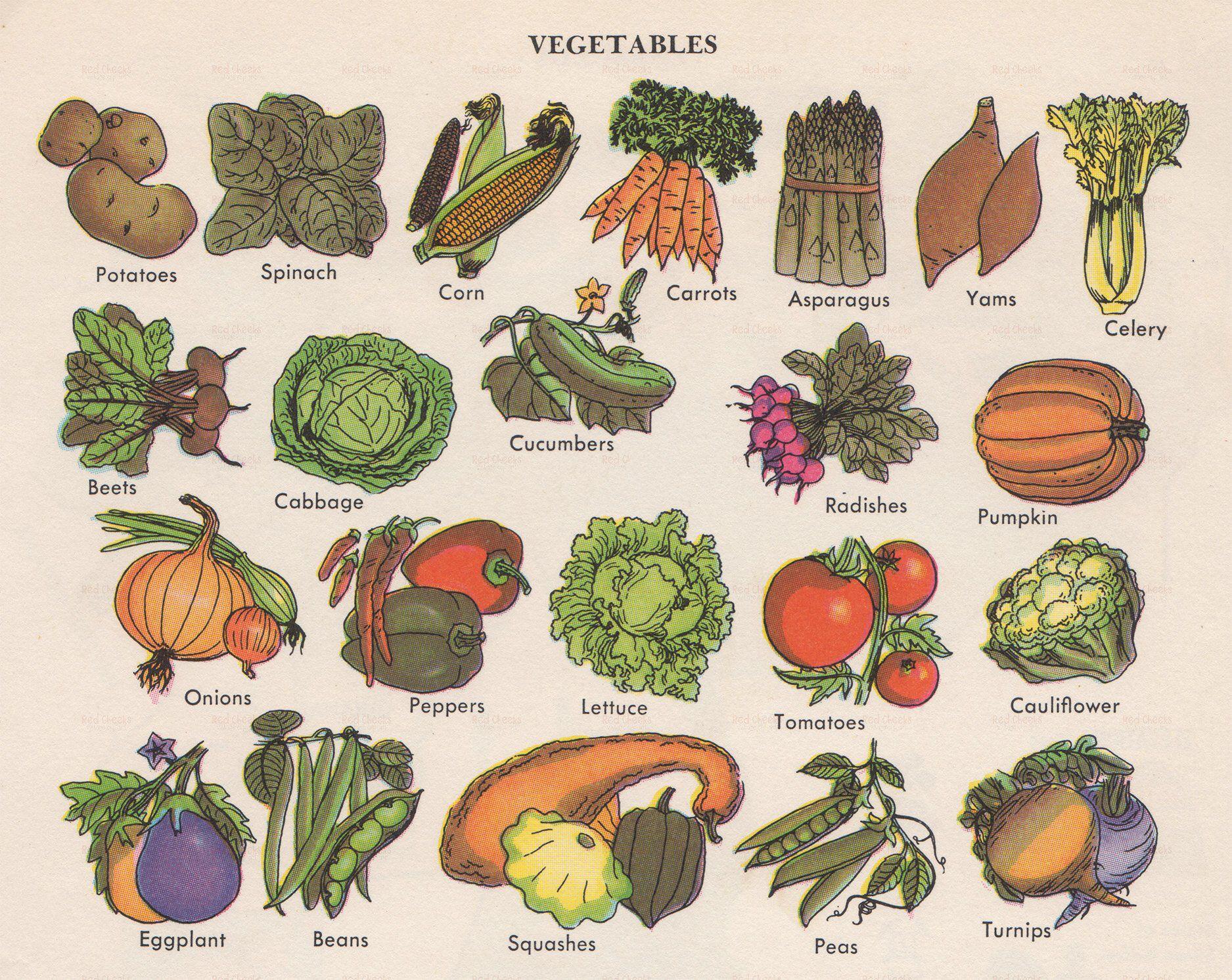 45c60227b74ac Digital Download of Vintage Vegetables Veggies Food Fresh Decor ...