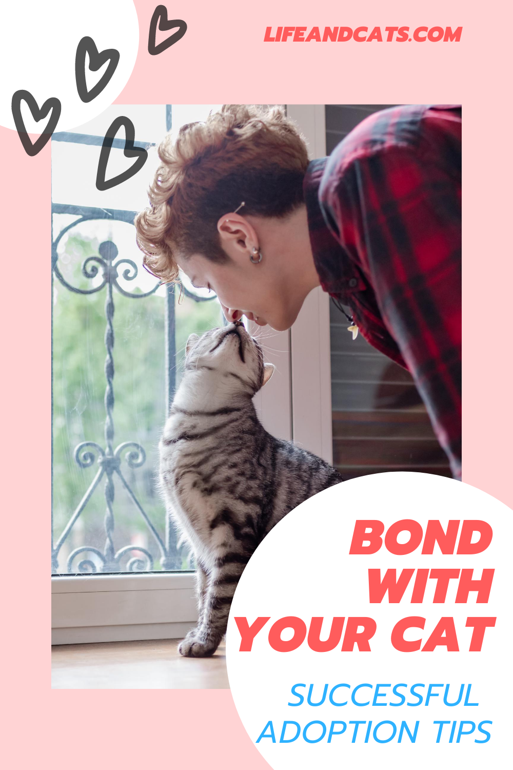 How To Build A Bond With Your New Cat Time Patience And Understanding Along With A Healthy Dose Of Prepara In 2020 Introducing A New Cat Cats Cat Behavior Problems