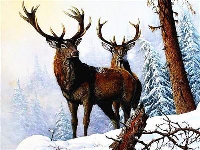 AZQSD Diamant Malerei Landschaft Diamant Stickerei Winter Schnee voll Platz Rhines …