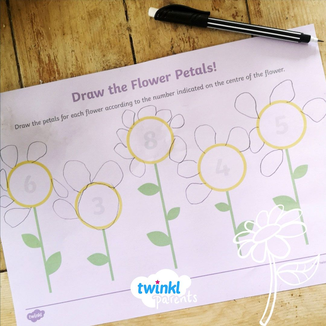 Draw The Flower Petals In