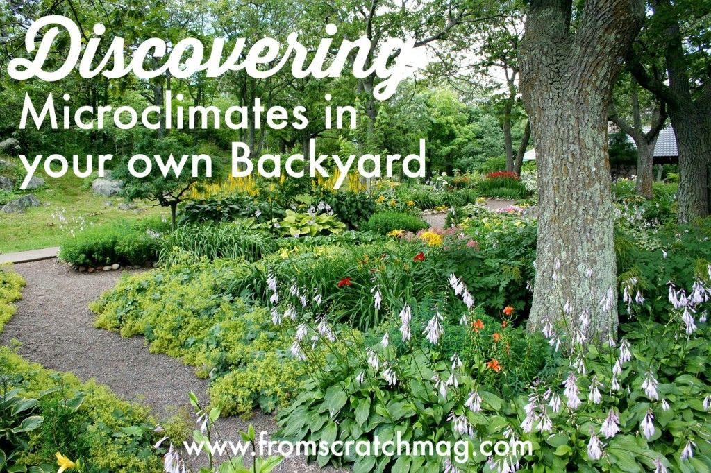 Whether You Are Setting Out As A First Time Gardener, Or Are Simply Ready  For