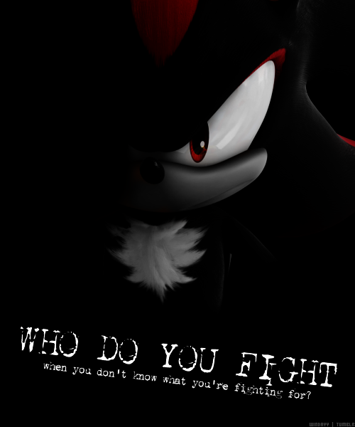 So Who Do You Fight For Shadow The Hedgehog Shadow And Amy Sonic And Shadow