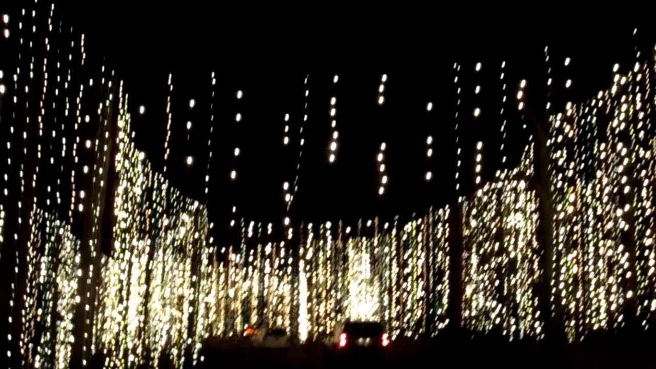 Callaway Gardens Fantasy in Lights Winter Wonderland