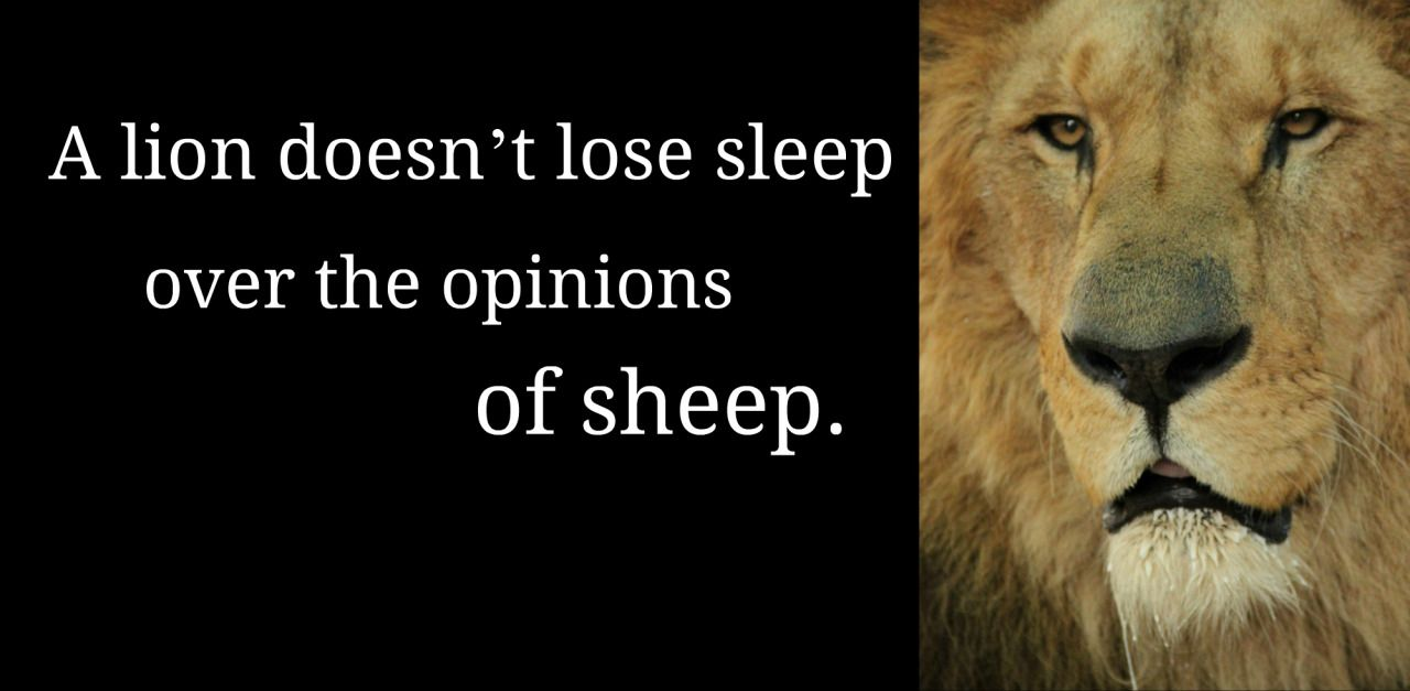 Dont let other peoples opinions control you have