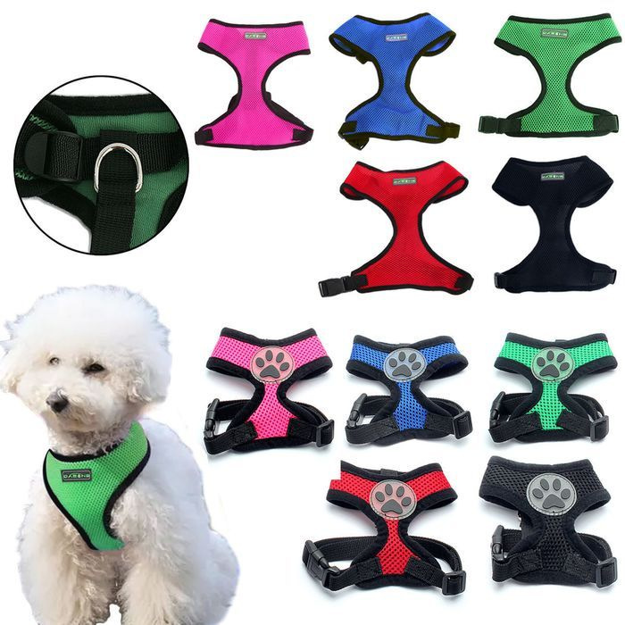Adjustable Pet Control Harness Collar Safety Strap Mesh Vest For Dog Puppy Cat On Ebid United States 144806661 Dog Harness Dogs And Puppies Cat Accessories
