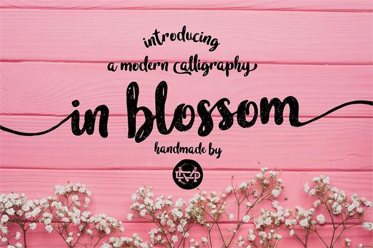 Madededuk Designer Fontspace Vintage Fonts Handwriting Fonts Free Font
