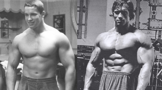 Arnold Before And After Steroids Arnold Schwarzenegger Muscle Cycle Arnold Schwarzenegger