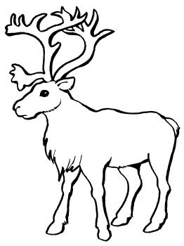 Reindeer Caribou Coloring Page Super Coloring Clipart Best Clipart Best Deer Coloring Pages Animal Coloring Pages Coloring Pages