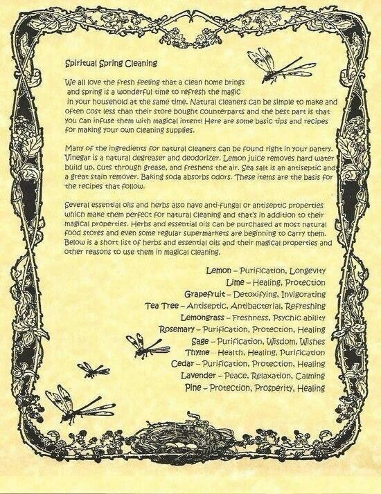 Details about Taurus Zodiac Astrological Poster or Wicca